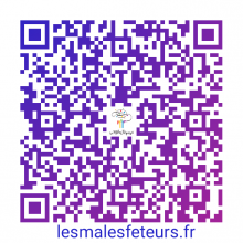 QR-Code Carte de Visite Les Mâles Fêteurs