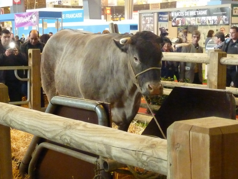 Salon international de l'agriculture 2016